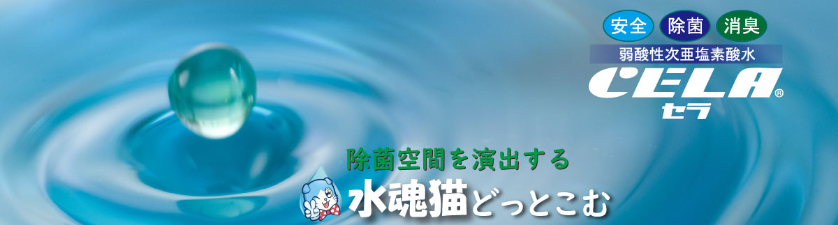 水魂猫.com (ミズタマキャットドットコム)